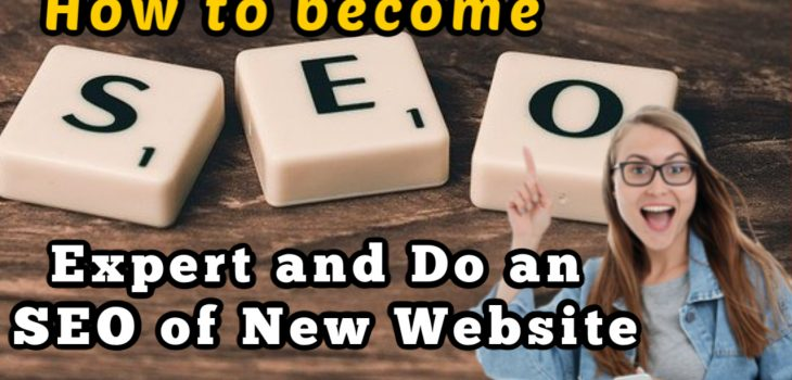 How to be an seo expert: how to do seo of a New Brand website