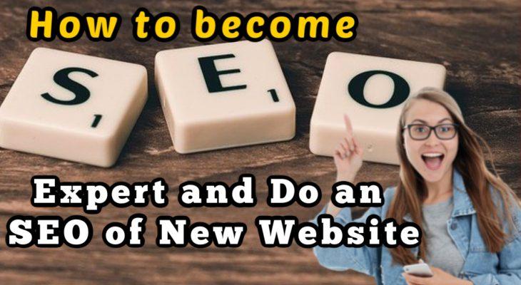 How to be an seo expert: how to do seo of a New Brand website